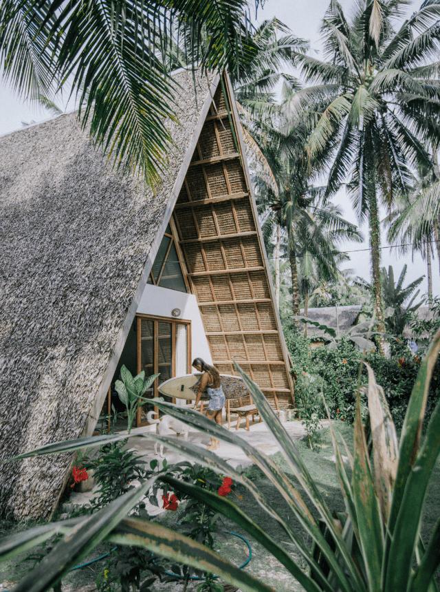house-palm@2x